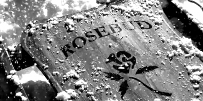 20150728235205-rosebud.png
